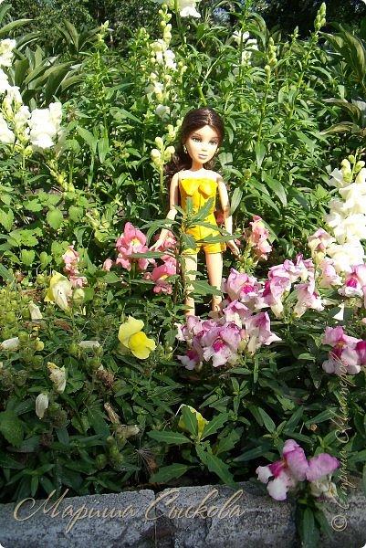 1 августа мы провели первую кукло-встречу . Встречались мои куклы и дочины с куклами Татьяны и Ксюши Воробьевых  фото 33