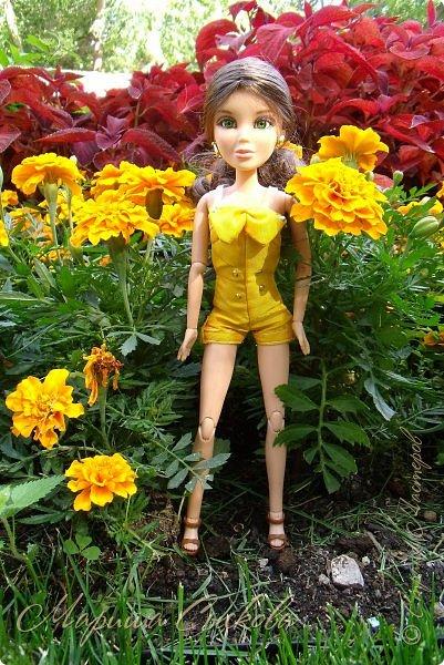 1 августа мы провели первую кукло-встречу . Встречались мои куклы и дочины с куклами Татьяны и Ксюши Воробьевых  фото 38