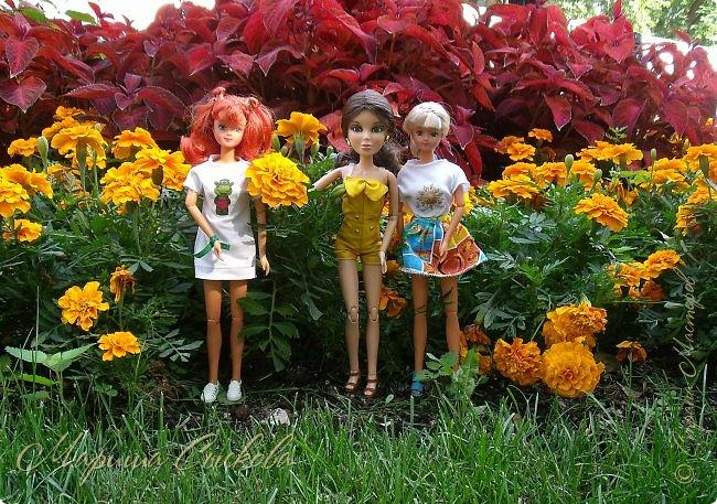 1 августа мы провели первую кукло-встречу . Встречались мои куклы и дочины с куклами Татьяны и Ксюши Воробьевых  фото 39