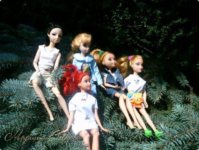 1 августа мы провели первую кукло-встречу . Встречались мои куклы и дочины с куклами Татьяны и Ксюши Воробьевых  фото 50