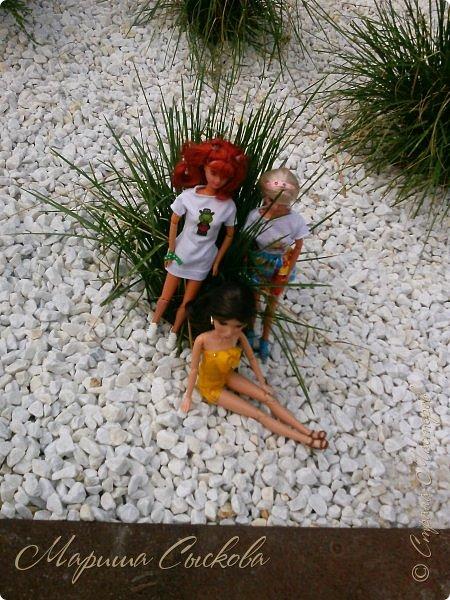 1 августа мы провели первую кукло-встречу . Встречались мои куклы и дочины с куклами Татьяны и Ксюши Воробьевых  фото 56