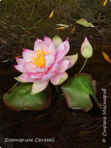 водяная лилия из шелкового фоамирана фото 1