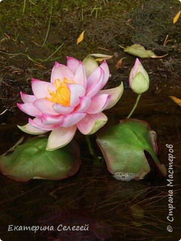 водяная лилия из шелкового фоамирана фото 2
