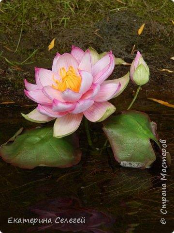 водяная лилия из шелкового фоамирана фото 3