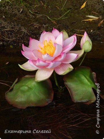 водяная лилия из шелкового фоамирана фото 4