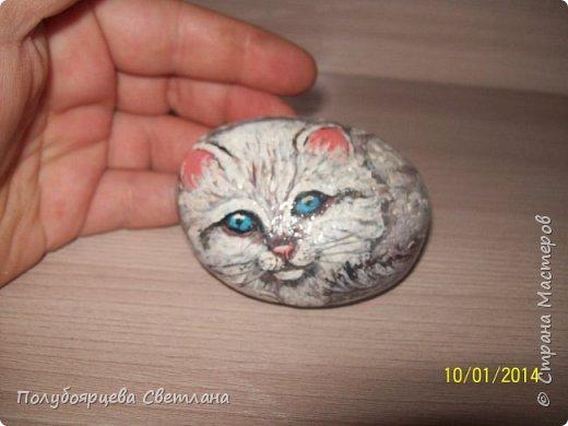 рисунки на камнях фото 6