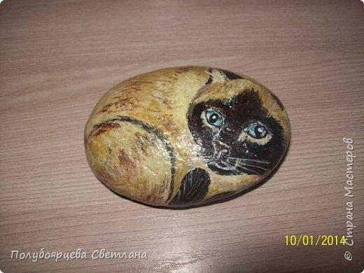 рисунки на камнях фото 8