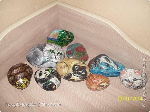 рисунки на камнях фото 12