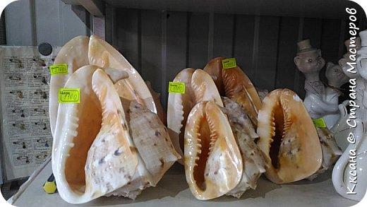 Здравствуйте! Поделюсь некоторыми фото от поездки на море в краснодарский край! Выложу фото различных сувениров - для вдохновения местным умельцам! Конечно кто регулярно ездит на море  -все это не в новинку - но я то была на море в ПЕРВЫЙ РАЗ В ЖИЗНИ!) фото 7