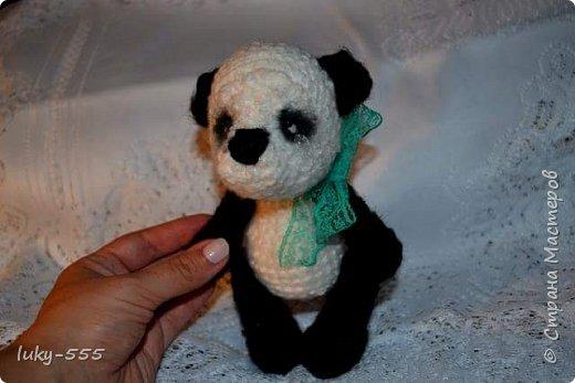 Домовёнок и грустная панда. фото 4
