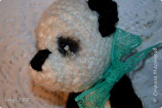 Домовёнок и грустная панда. фото 6