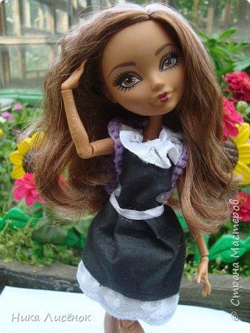 """Всем привет!!! Сегодня я сдаю работу на конкурс """"Назад в школу"""", и да, у меня появилась новенькая Зовут Кедра Вуд!!! фото 1"""