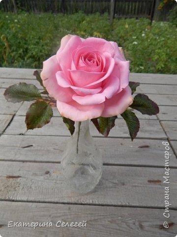 роза из супер тонкого фоамирана фото 3