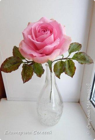 роза из супер тонкого фоамирана фото 1