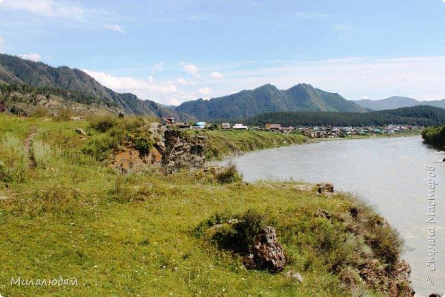 Всем здравствуйте! Продолжаем путешествие. Мы приехали в Чемал и сразу на мой любимый берег. Мы всегда по приезду приходим на берег Катуни и перед отъездом мы тоже всегда с ним прощаемся. А сегодня я пришла с ним поздороваться. фото 7