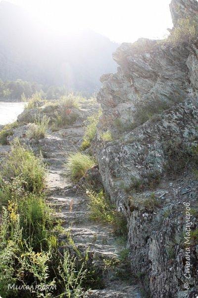 Всем здравствуйте! Продолжаем путешествие. Мы приехали в Чемал и сразу на мой любимый берег. Мы всегда по приезду приходим на берег Катуни и перед отъездом мы тоже всегда с ним прощаемся. А сегодня я пришла с ним поздороваться. фото 18