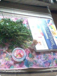 Всем привет! Я хочу показать,как сделать вот такой милый островок из травы и пластилина! Им можно украсить рабочий стол. фото 2