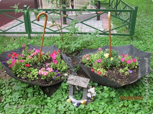Вот такие два цветочных зонта у нас во дворе. фото 1