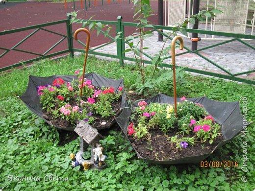 Вот такие два цветочных зонта у нас во дворе. фото 2