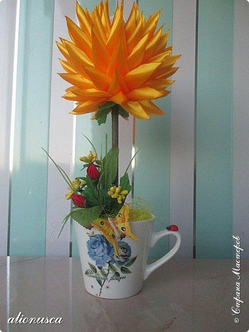 Focul florii inflorite фото 2