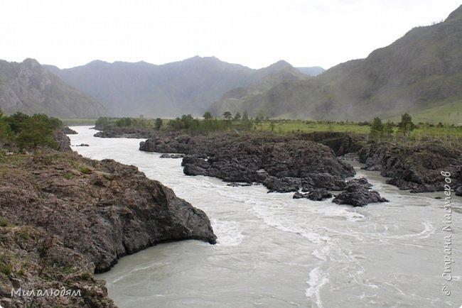 Всем здравствуйте! Продолжаем путешествие. Мы приехали в Чемал и сразу на мой любимый берег. Мы всегда по приезду приходим на берег Катуни и перед отъездом мы тоже всегда с ним прощаемся. А сегодня я пришла с ним поздороваться. фото 55