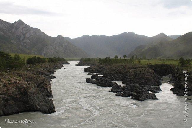 Всем здравствуйте! Продолжаем путешествие. Мы приехали в Чемал и сразу на мой любимый берег. Мы всегда по приезду приходим на берег Катуни и перед отъездом мы тоже всегда с ним прощаемся. А сегодня я пришла с ним поздороваться. фото 57