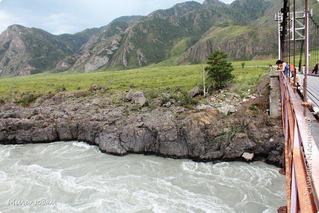 Всем здравствуйте! Продолжаем путешествие. Мы приехали в Чемал и сразу на мой любимый берег. Мы всегда по приезду приходим на берег Катуни и перед отъездом мы тоже всегда с ним прощаемся. А сегодня я пришла с ним поздороваться. фото 62