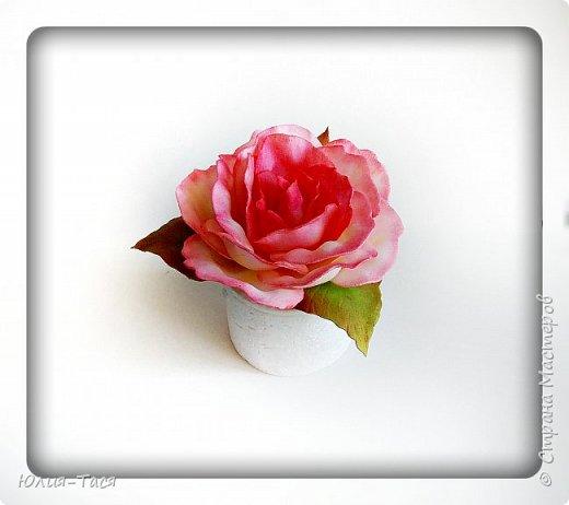 Учусь делать розы из зефирки фото 2