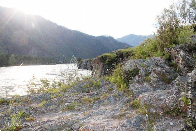 Всем здравствуйте! Продолжаем путешествие. Мы приехали в Чемал и сразу на мой любимый берег. Мы всегда по приезду приходим на берег Катуни и перед отъездом мы тоже всегда с ним прощаемся. А сегодня я пришла с ним поздороваться. фото 22