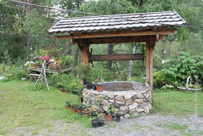 """Всем здравствуйте! Продолжаем наше путешествие. И сегодня мы направляемся в """"Сад пионов"""". Очень уютное и красивое место. И моя любимая гортензия. фото 6"""