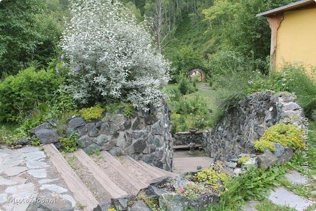 """Всем здравствуйте! Продолжаем наше путешествие. И сегодня мы направляемся в """"Сад пионов"""". Очень уютное и красивое место. И моя любимая гортензия. фото 13"""