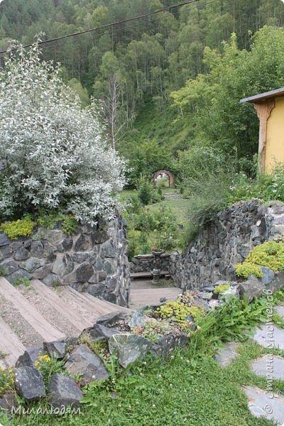 """Всем здравствуйте! Продолжаем наше путешествие. И сегодня мы направляемся в """"Сад пионов"""". Очень уютное и красивое место. И моя любимая гортензия. фото 14"""