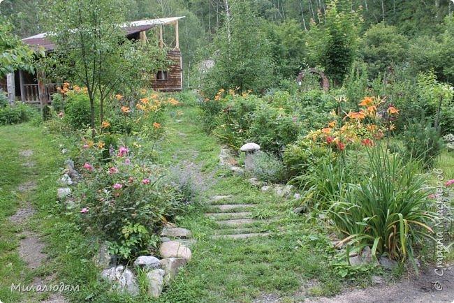 """Всем здравствуйте! Продолжаем наше путешествие. И сегодня мы направляемся в """"Сад пионов"""". Очень уютное и красивое место. И моя любимая гортензия. фото 15"""