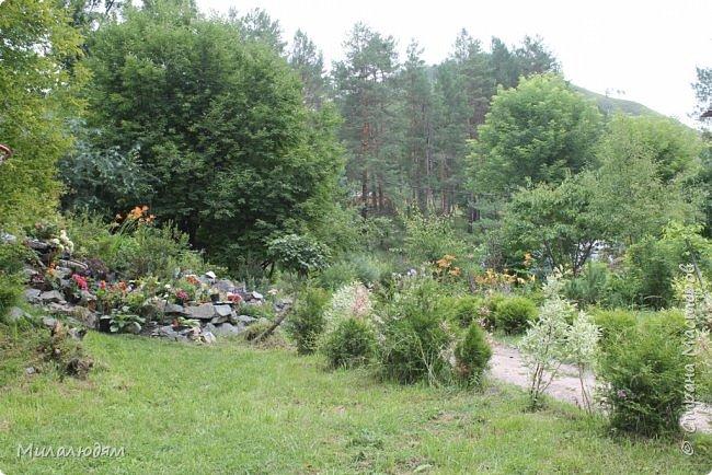 """Всем здравствуйте! Продолжаем наше путешествие. И сегодня мы направляемся в """"Сад пионов"""". Очень уютное и красивое место. И моя любимая гортензия. фото 22"""