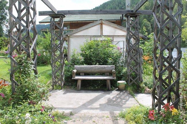 """Всем здравствуйте! Продолжаем наше путешествие. И сегодня мы направляемся в """"Сад пионов"""". Очень уютное и красивое место. И моя любимая гортензия. фото 35"""