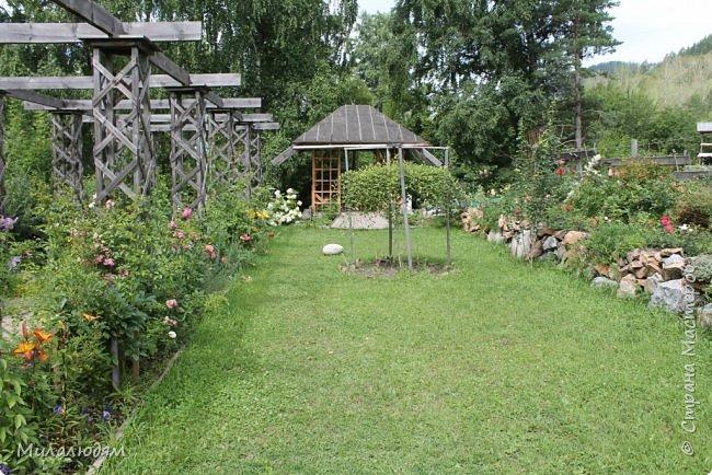 """Всем здравствуйте! Продолжаем наше путешествие. И сегодня мы направляемся в """"Сад пионов"""". Очень уютное и красивое место. И моя любимая гортензия. фото 40"""