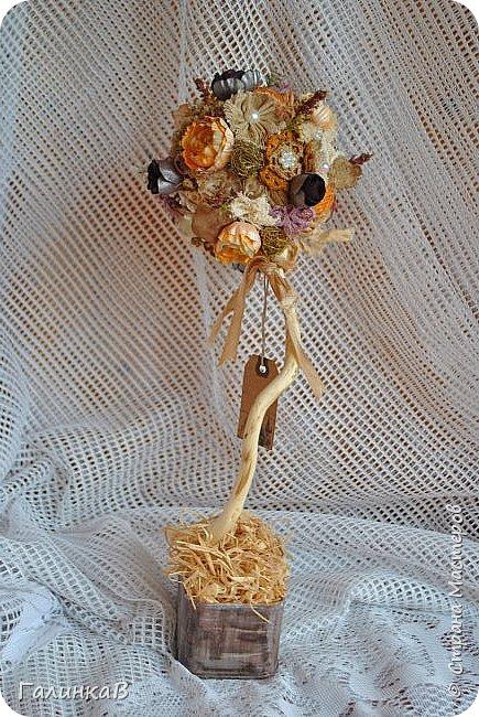 Здравствуйте, мои дорогие, мастерицы! Давно ничего не выставляла, летние дачные хлопоты, отпуск, жара - все это как-то не давало времени для творчества. Но все-таки что-то как-то иногда я делала, а именно - цветочки для моего нового текстильного топиария. фото 5