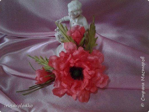 Мои цветочки фото 8