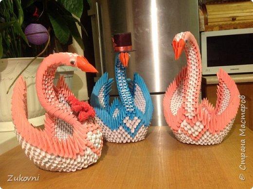 Мои прекрасные лебеди фото 2