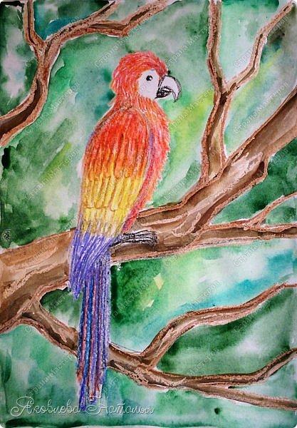 """Всем, здравствуйте!  Продолжаю рубрику """"Рисуем с детьми"""". На этот раз мы рисовали попугая на формате А-3, акварелью и восковыми мелками. Эскиз рисовали простым карандашом.  Ниже работы детей и несколько этапов фото 1"""