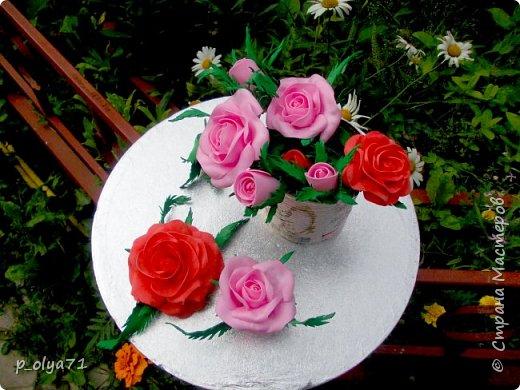 Здравствуйте!!!  Каждое время года хорошо по-своему.. Лето радует нас пестротой, разнообразием красок.. Вот я и любуюсь,любуюсь и любуюсь!..))) Хочу и с вами поделиться частичкой красоты,которую нам дарит природа!  Спасибо ей! фото 38