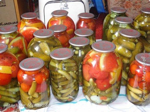 Хочу поделиться с жителями СМ рецептом заготовки овощей. По этому рецепту делаю маринады уже почти 30 лет. Можно консервировать отдельно огурцы, помидоры, а можно и овощное ассорти (помидоры+огурцы, помидоры+огурцы+арбузы,  помидоры+огурцы+арбузы+капуста). фото 1