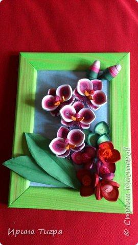 цветы сделаны из бумаги 3 мм и 1.5 мм фото 1