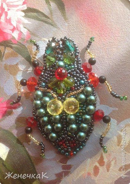 Фантазийный жук-брошь для гламурной красавицы.))))) фото 1