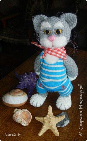 Кот Васька фото 1