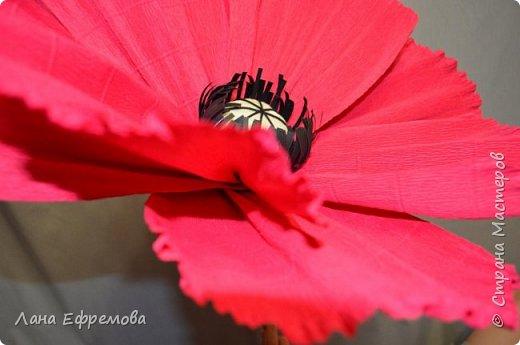 Большие цветы из бумаги фото 6