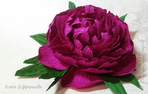 Большие цветы из бумаги фото 2