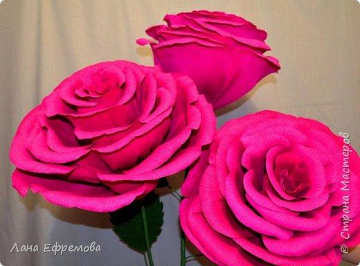 Большие цветы из бумаги фото 3