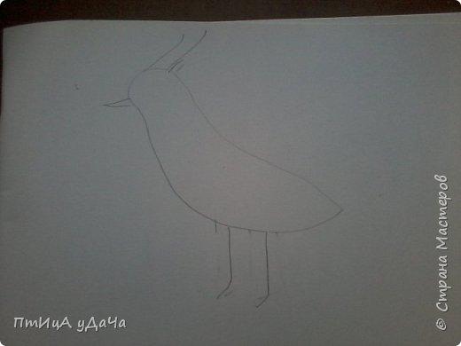 Вот такая птичка - луговка! фото 2