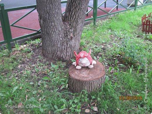 Еще один житель нашего школьного двора. фото 3